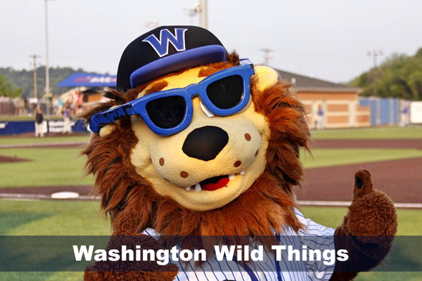 Washington Wild Things mascott