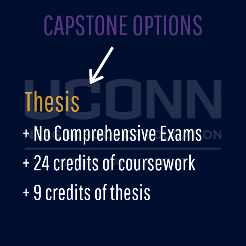 Thesis path