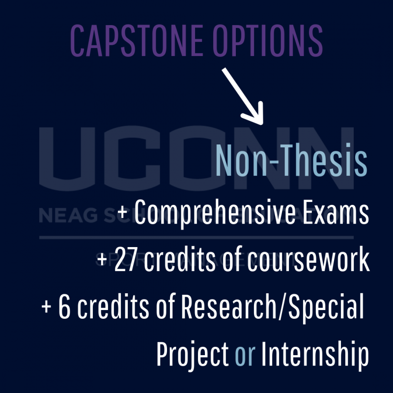 Non-thesis path