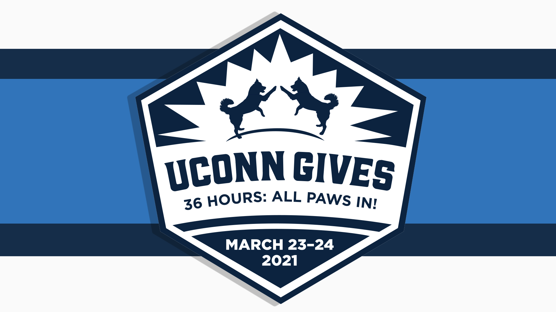 UConn Gives 36 Hours: All Paws In!  March 23-24, 2021